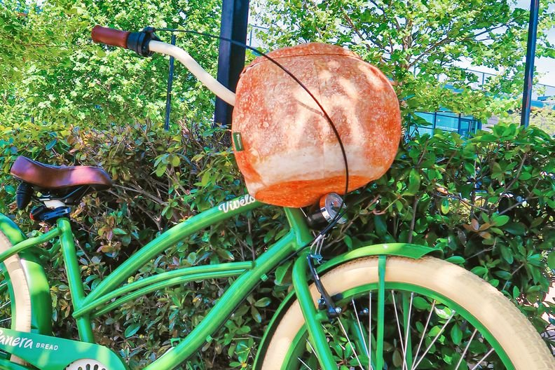 Panera Bread Bowl Bike