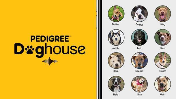 Pedigree Doghouse