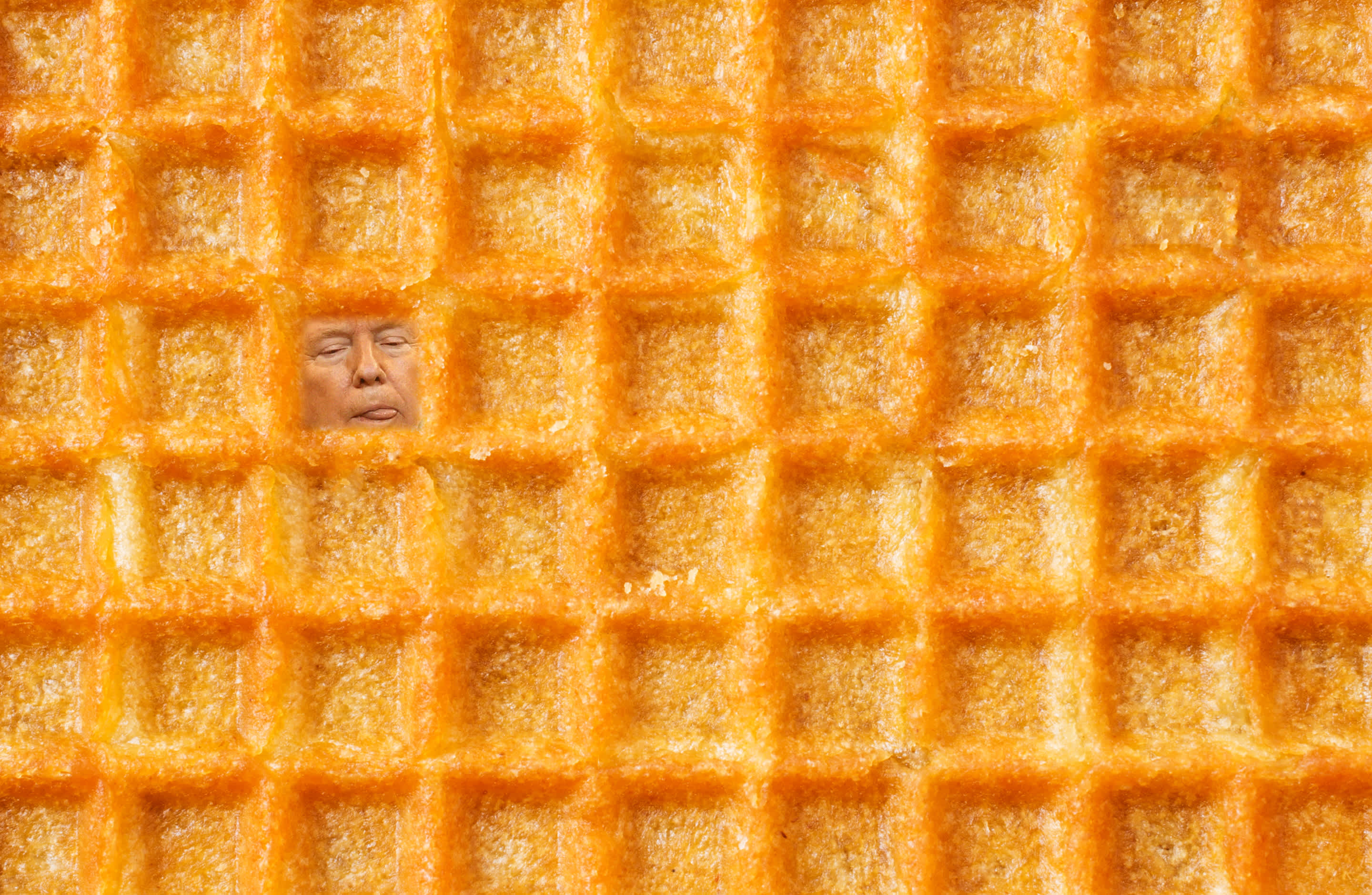 Donald Trump's face embedded in a waffle