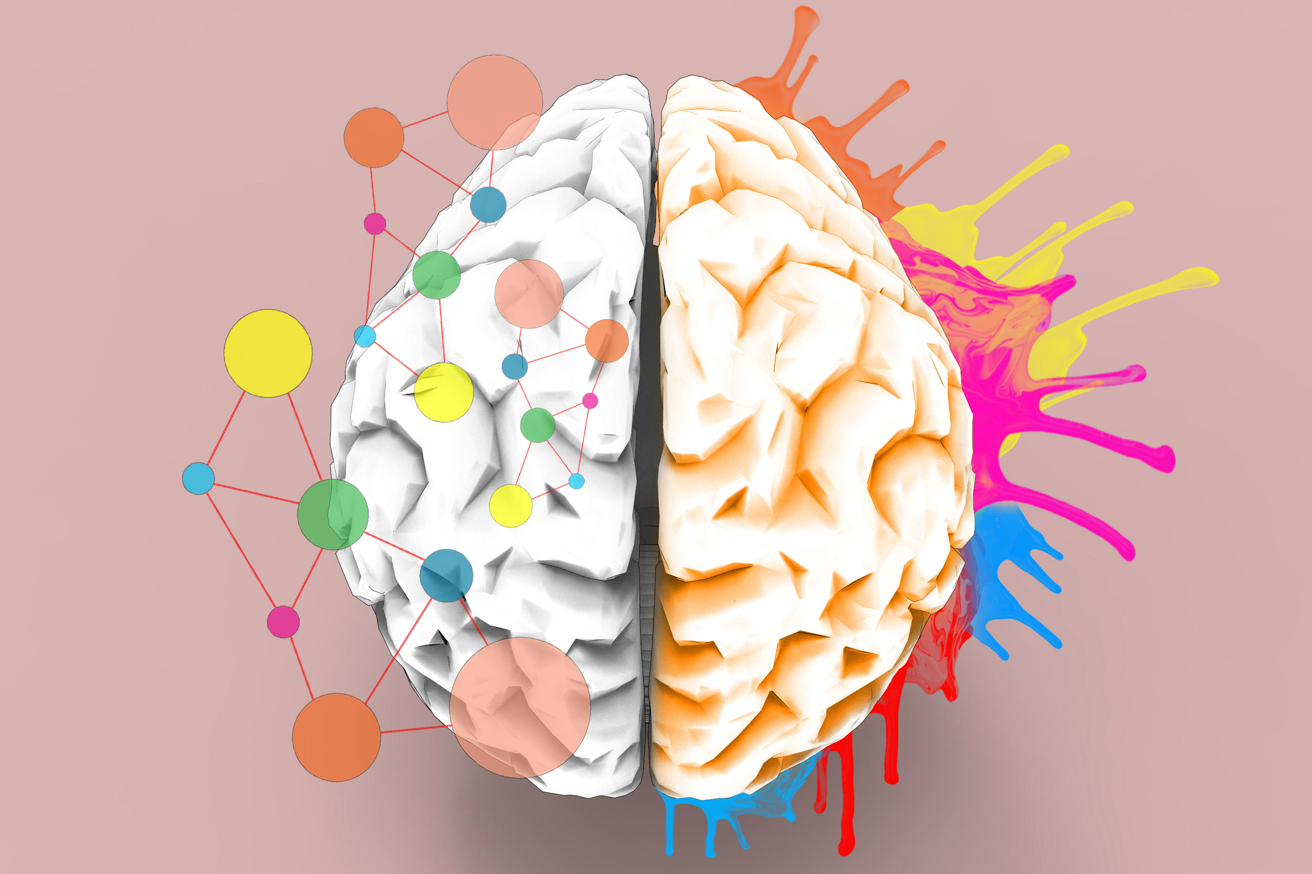 How neuroscience equips us to become better creators