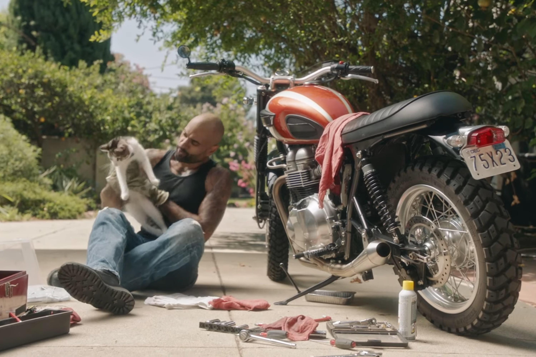 VCA: Pet Friendly