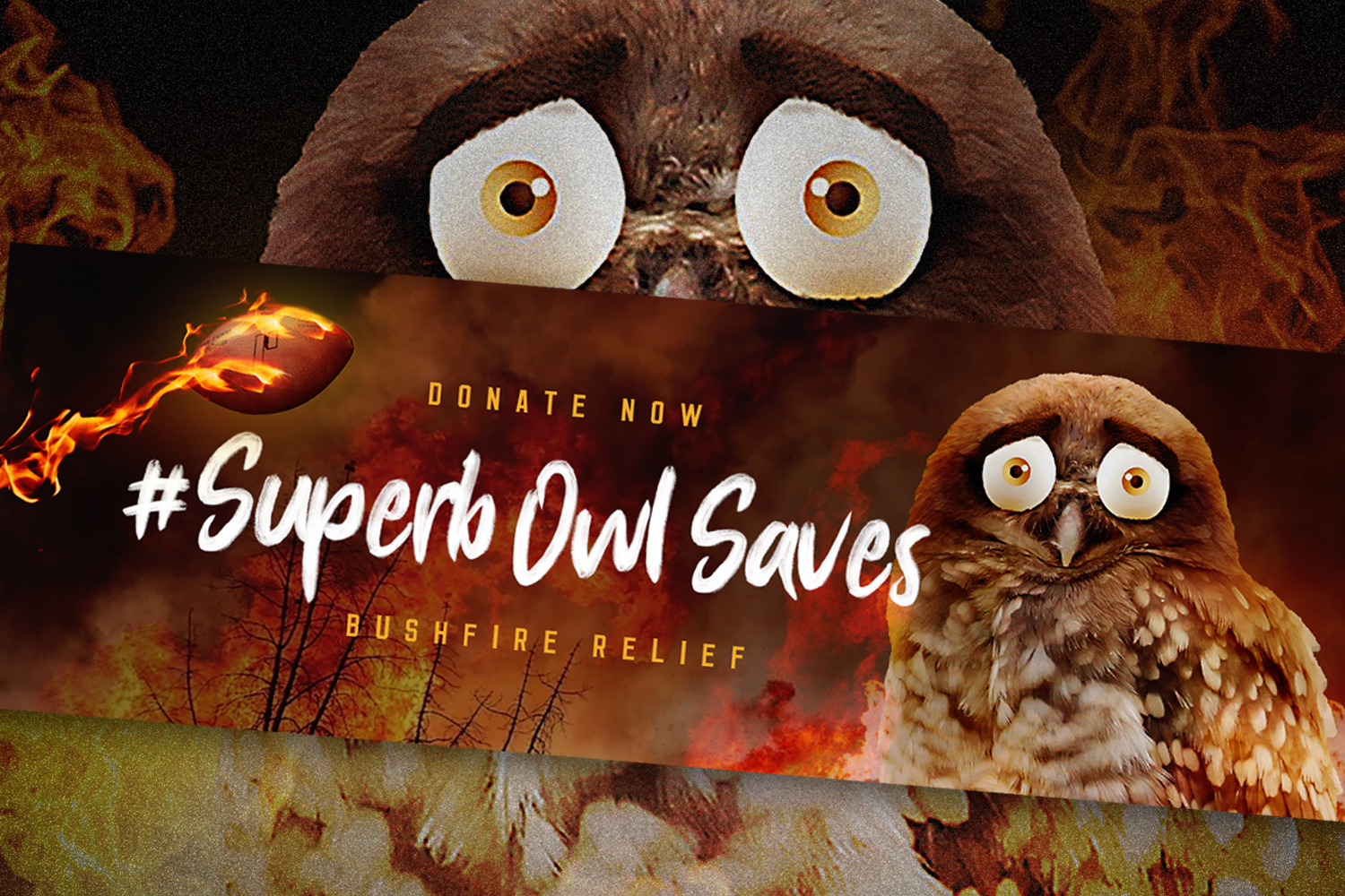 Agency Brief: Owl to swoop into Super Bowl for Australian wildlife relief
