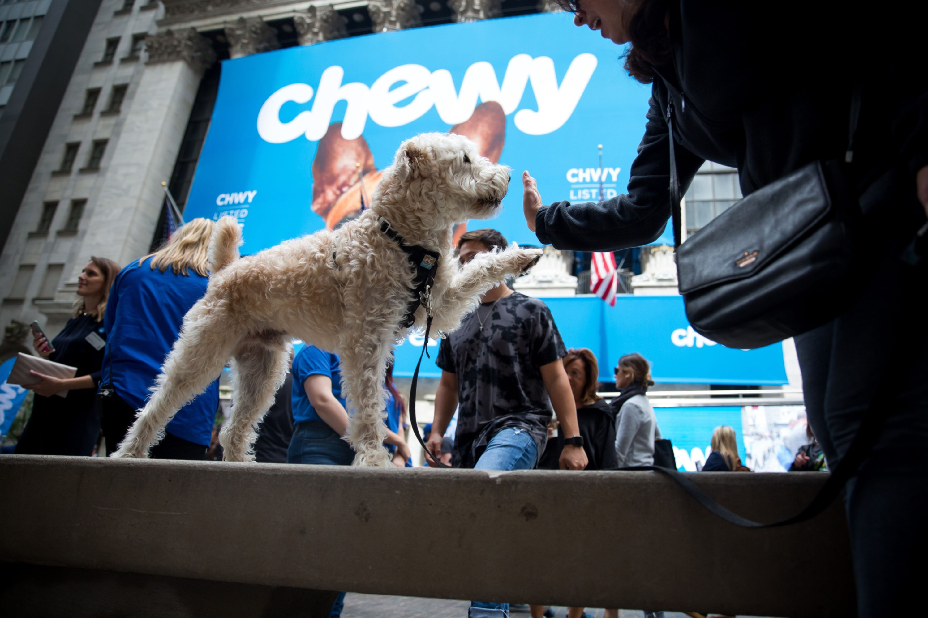 Chewy CEO sees online shopping rush 'here to stay' as sales boom