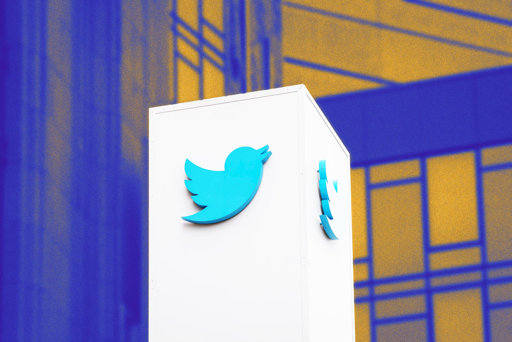 Twitter ad revenue plummets despite record user growth