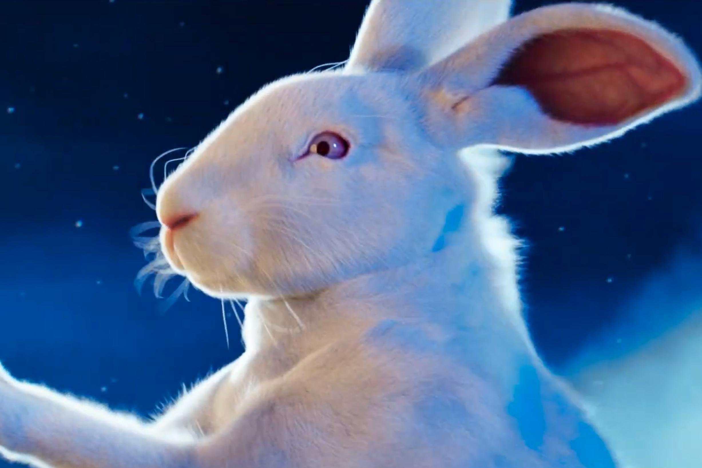 Lacta: Christmas Bunny