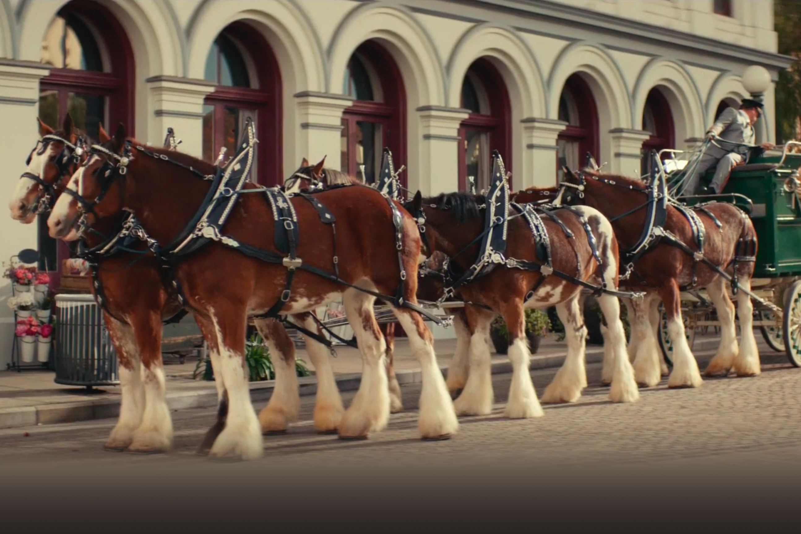 Sam Adams spoofs Bud's Clydesdales and Walgreens hires Starbucks' Brewer: Wednesday Wake-Up Call