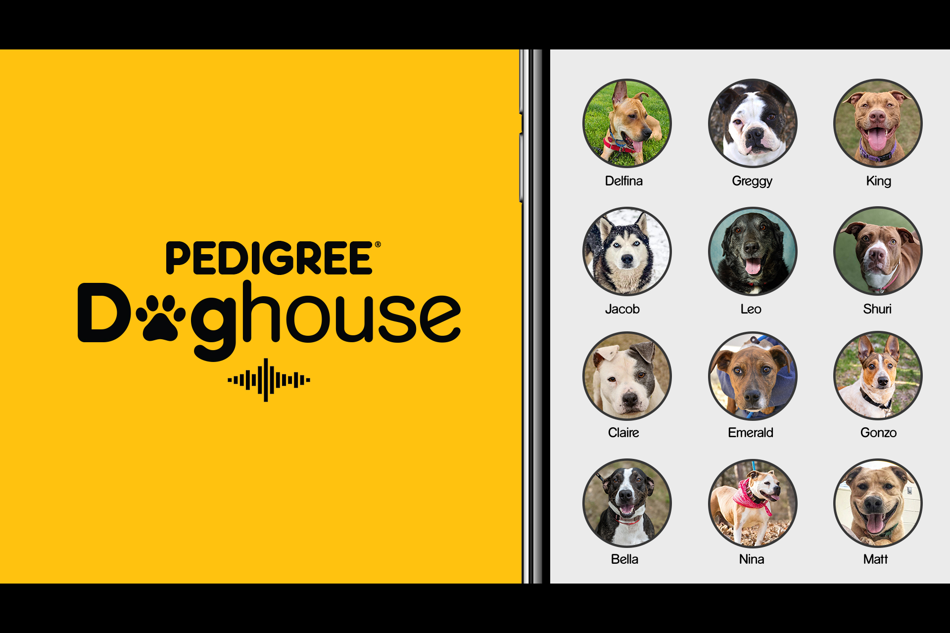 Pedigree invites prospective pet owners to 'interview' shelter dogs in Clubhouse