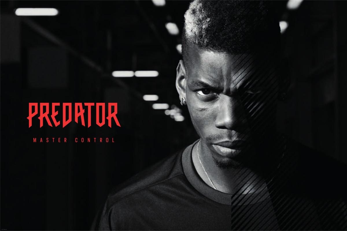 Predator Is Back