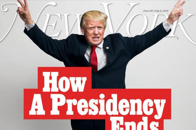 Is This NYMag Cover Story Prescient or Wishful Thinking?