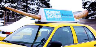 Mammoth-Sized Taxi Toppers