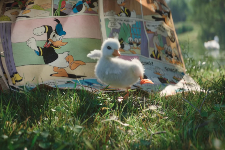 donald duck download video