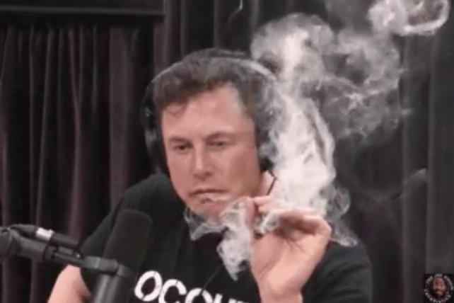 Musk-see memes and other reactions to Elon smoking weed