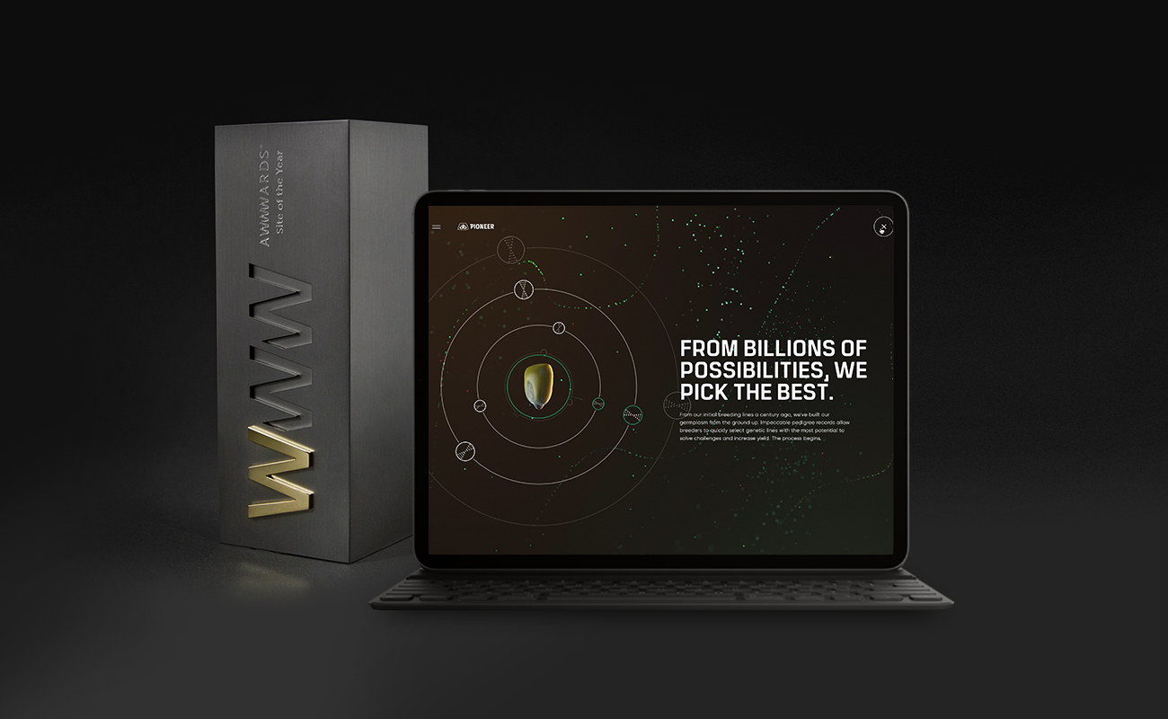 Awwwards name Pioneer.com Site of the Year
