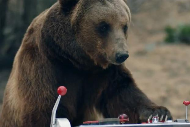sports shoes 61d1d 01eae A Grizzly Tries to Destroy a Bear-Proof Cooler in This Hilarious ...