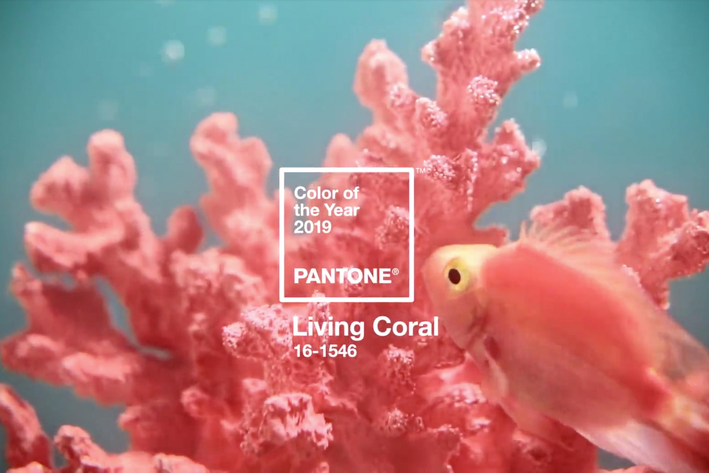 Pantone: 2019 Color of the Year Living Coral