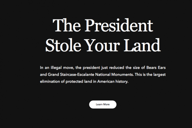 Patagonia to Sue Trump Administration Over 'Unlawful Actions'