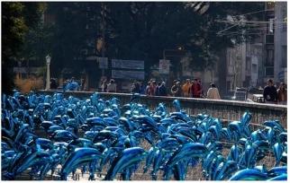 Dolphins Installation