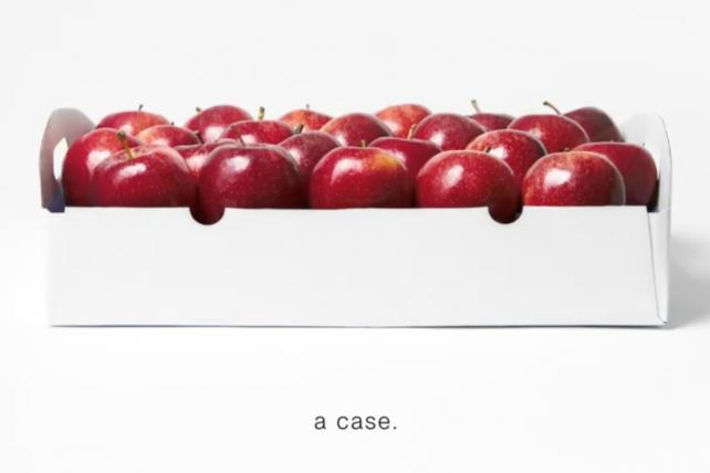 CNN's New Ad: All Those Trump Apples Add Up to 'a Case'