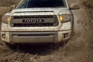 True Dirt