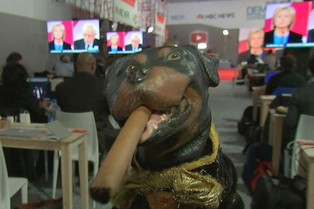 Triumph the Insult Comic Dog to Star in One-Hour Hulu Election Special