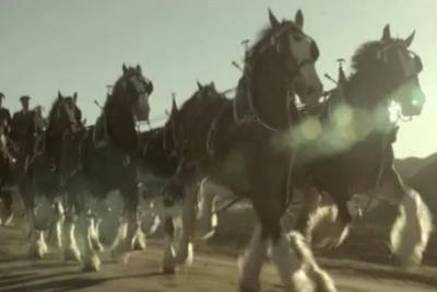 Budweiser - Return of the King