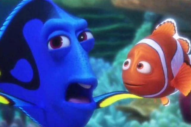 Trouble Finds Dory in Band-Aid's New Spot
