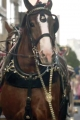 Super Bowl Ad Review: The Good, the Bad, the Clydesdales