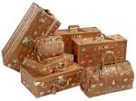 The Newest Big-Screen Ingenue: Luxury Luggage