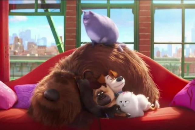 Where Do Their Owners Go? Dogs, Cats From 'The Secret Life of Pets' Wonder in New McDonald's Spot