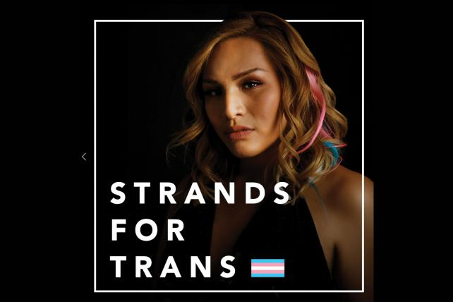 Small Agency Campaign of the Year B-to-B Silver: Strands for Trans