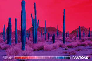 Pantone puts an unexpected spin on nature