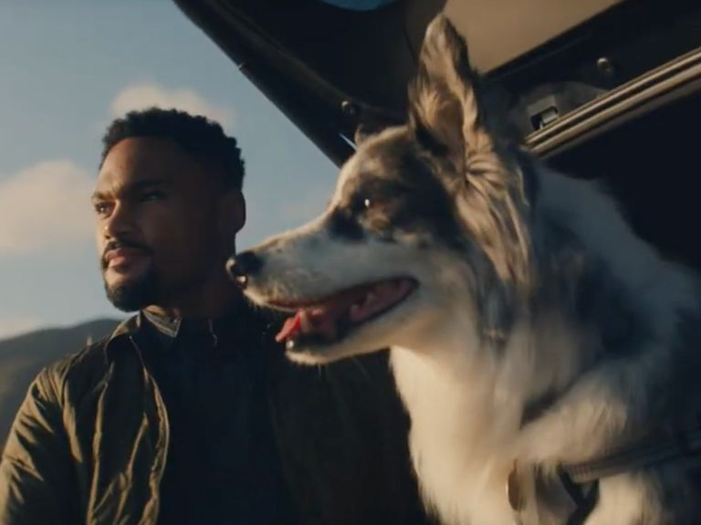 Watch the newest commercials on TV from Chewy, BMW, Chime and more