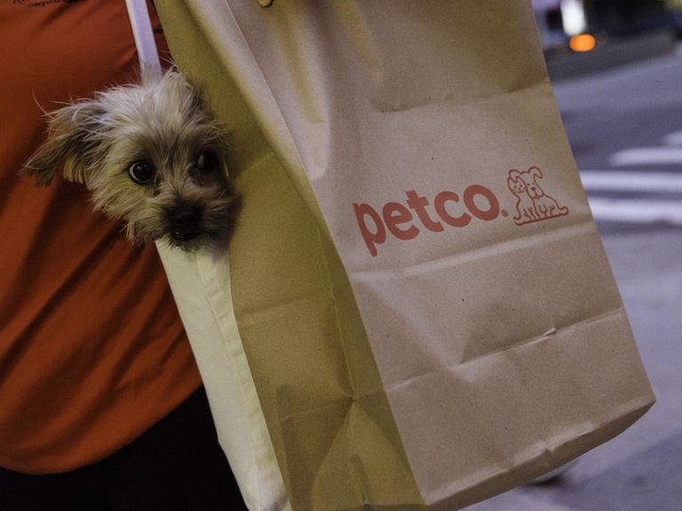 Petco adopts Droga5 as its new creative agency