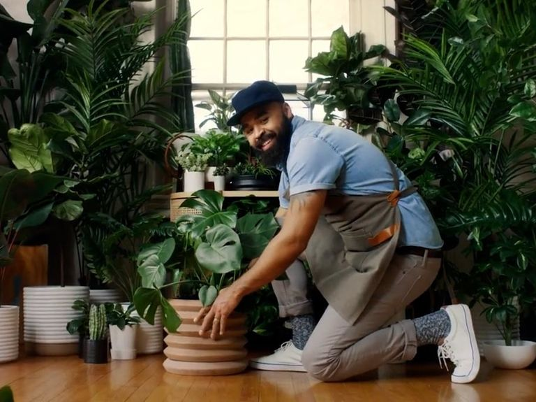 Watch the newest commercials on TV from LL Flooring, Target, Skillshare and more