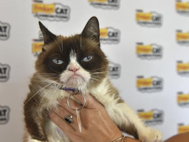 How Cryptokitties Killed Grumpy Cat at SXSW