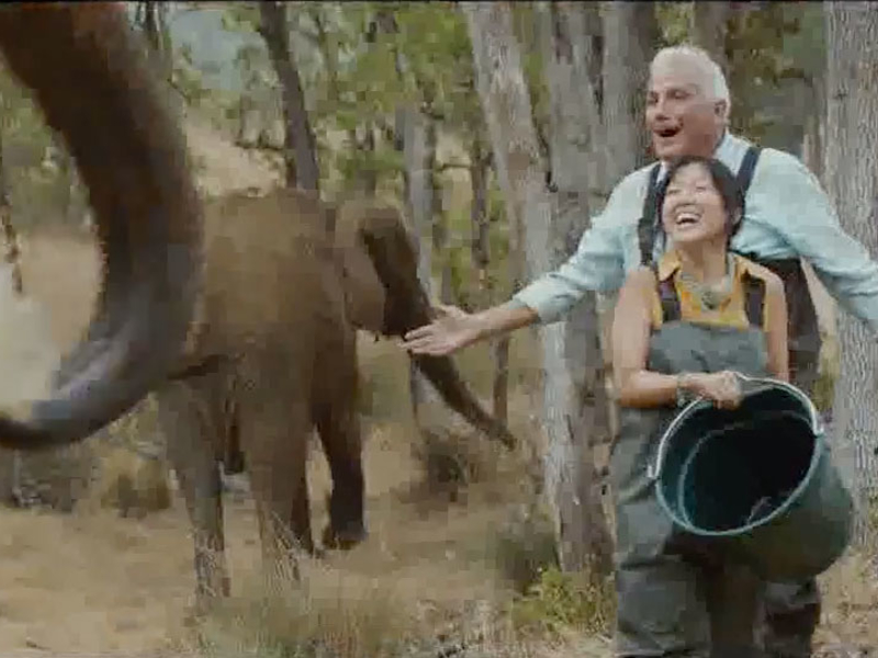 Chase pulls elephant ad campaign after pressure from PETA