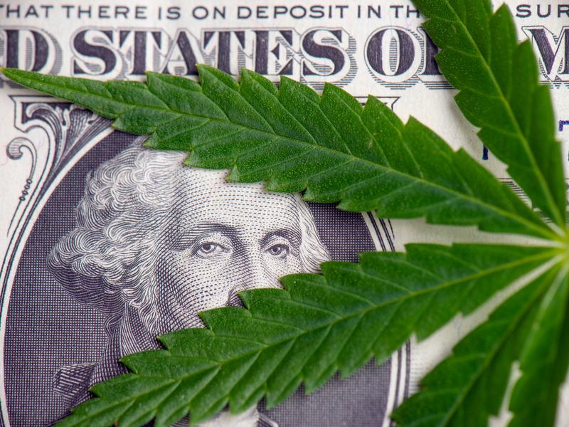 Weed-tech startup raises $16 million