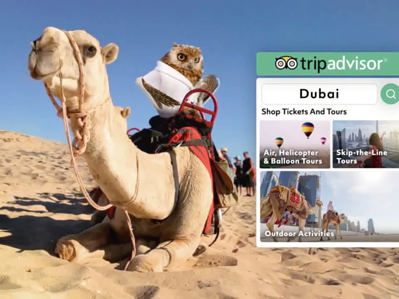TripAdvisor selects Mother as its new creative agency  | Ad Age