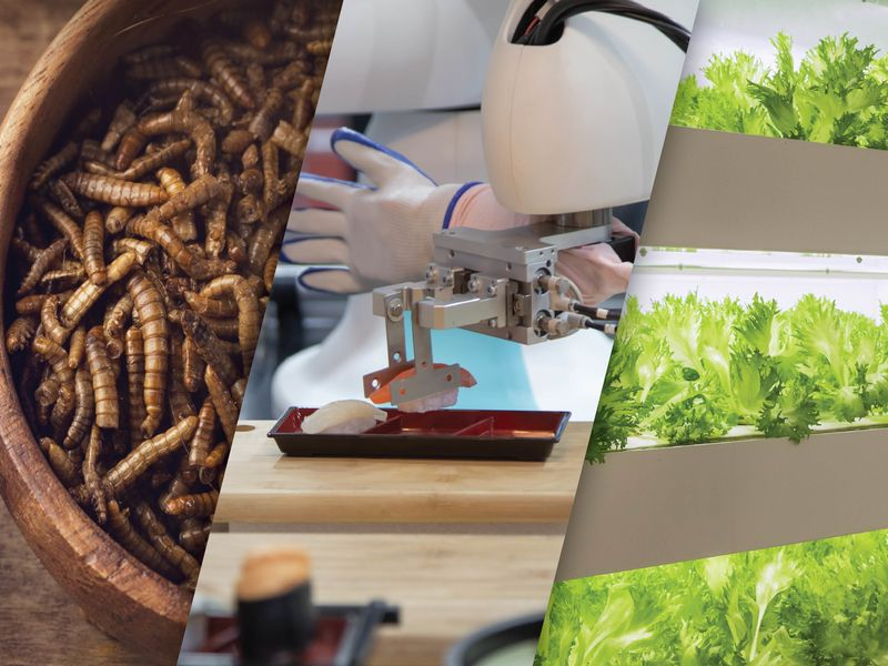 From seasoned worms to vertical farms, there are plenty of food trends to watch in 2021 | Ad Age
