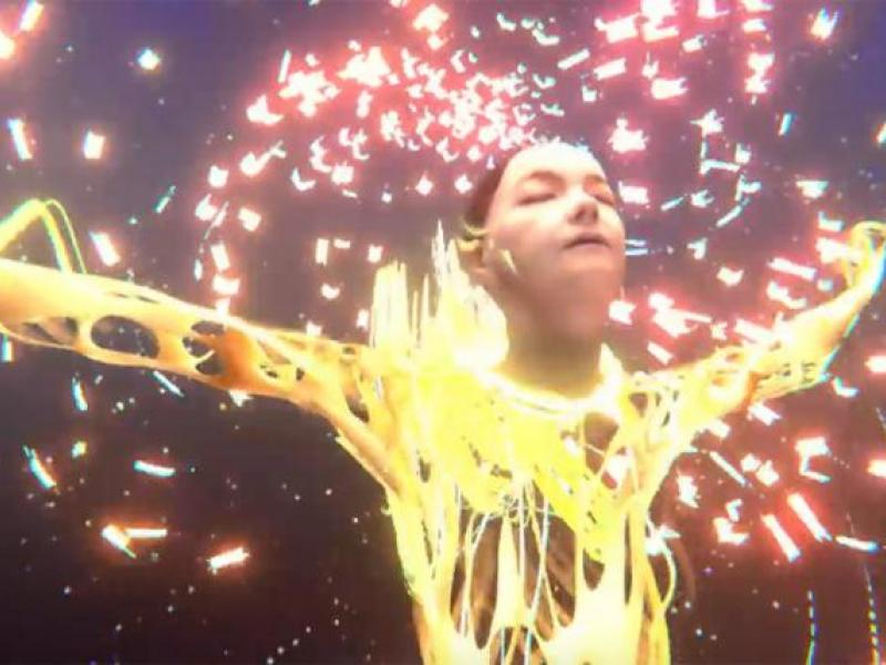 Music Videos for Bjork and The Blaze Take the Craft Grand Prix in