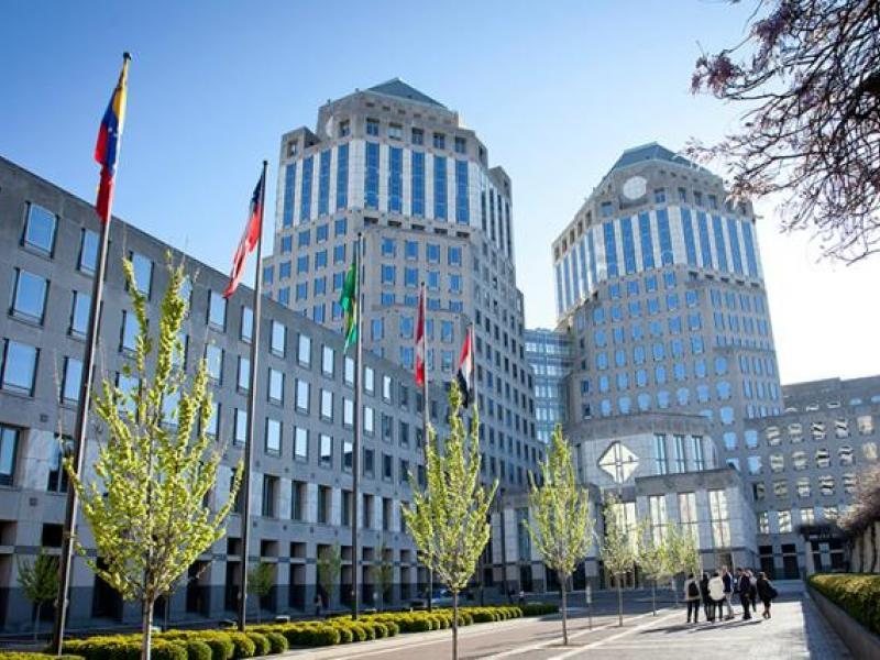 Procter & Gamble cuts agency fees harder, but sales grow faster
