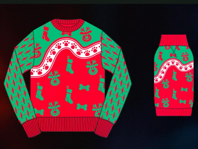 Dogs Design Christmas Sweaters To Match Their Owners In Cesars