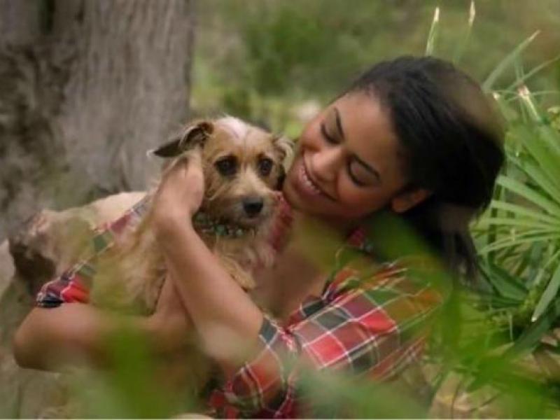 Skechers, Best Friends Animal Society