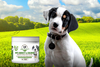Spuds MacKenzie is back in marketing, this time selling hemp treats for dogs
