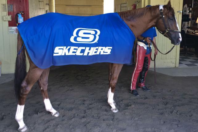 skechers sponsorship