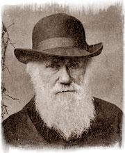 DARWIN'S THEORIES APPLIED TO MARKETING
