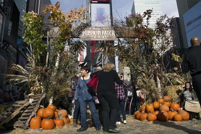 Google Sprouts a Pumpkin Patch In Times Square to Promote Photos App
