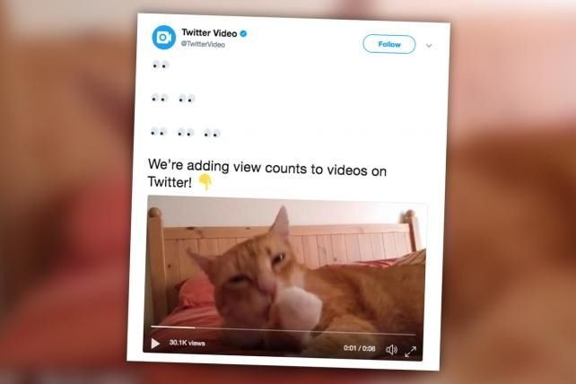 Twitter Starts Showing How Many Views its Videos Get