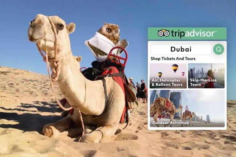 TripAdvisor selects Mother as its new creative agency
