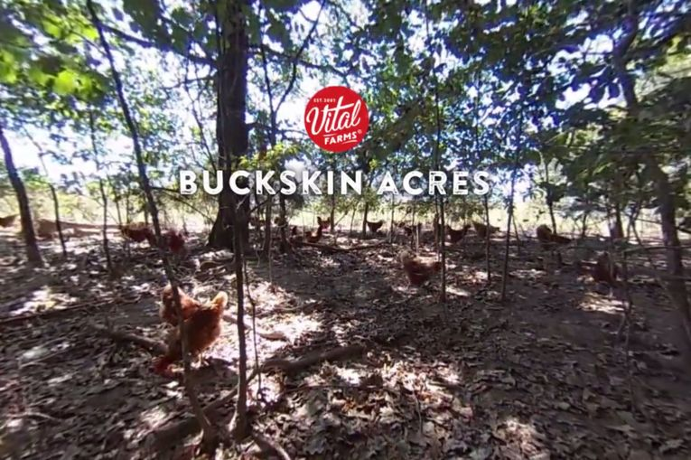 Vital Farms: Traceability